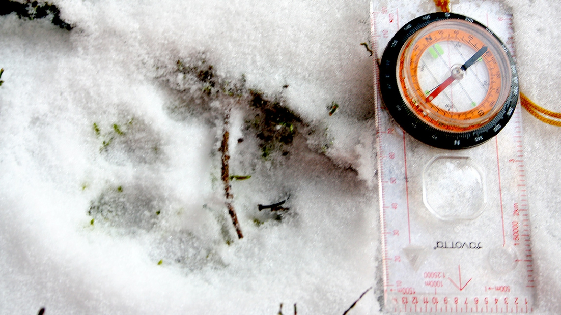 Four-toe lynx footprint in the snow. Next to a compass.